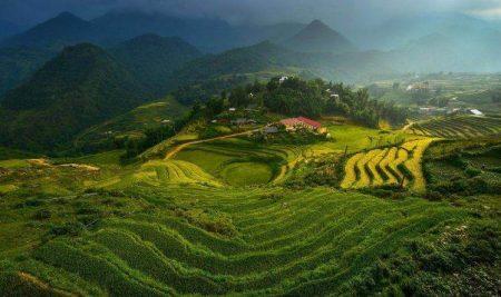 Vietnamese Translation Service