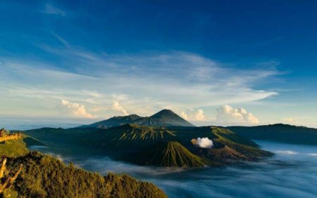 Bahasa Indonesia Translation Service